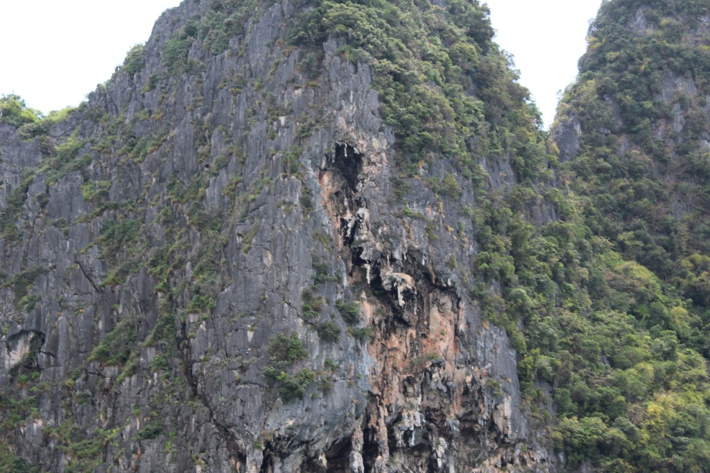 Sometimes there were patches of eroded limestone higher up the rock faces.