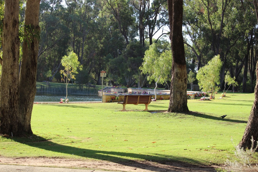 The Pinnaroo Valley Memorial Park is in a park like setting with many waling paths.